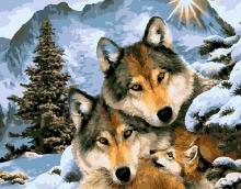 Картина по номерам Волчьи узы 40х50см.