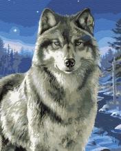 Картина по номерам Волк в заполярье 40х50см.