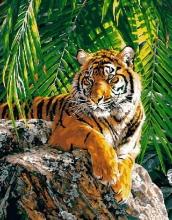 Картина по номерам Бенгальский тигр 40х50см.