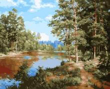 Картина по номерам Сосновый лес 40х50см.