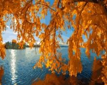 Картина по номерам Осень на пруду 40х50см.