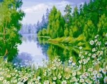 Картина по номерам Летний лес 40х50см.