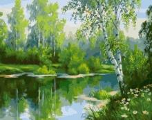 Картина по номерам Природа России 40х50см.