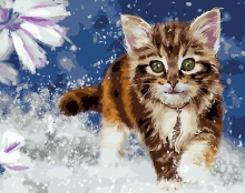 Картина по номерам Очаровательный котенок 40х50см.