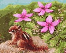 Картина по номерам Бурундук и цветы 40х50см.