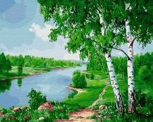 Картина по номерам Березки у реки 40х50см.
